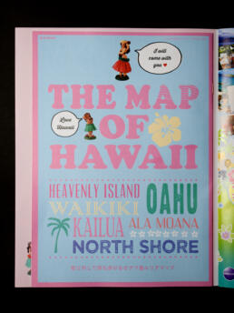 sweet LOVE HAWAII ©GRAPHITICA